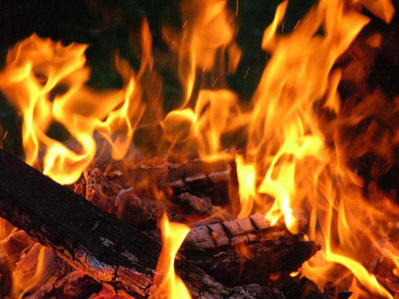 Foto Api